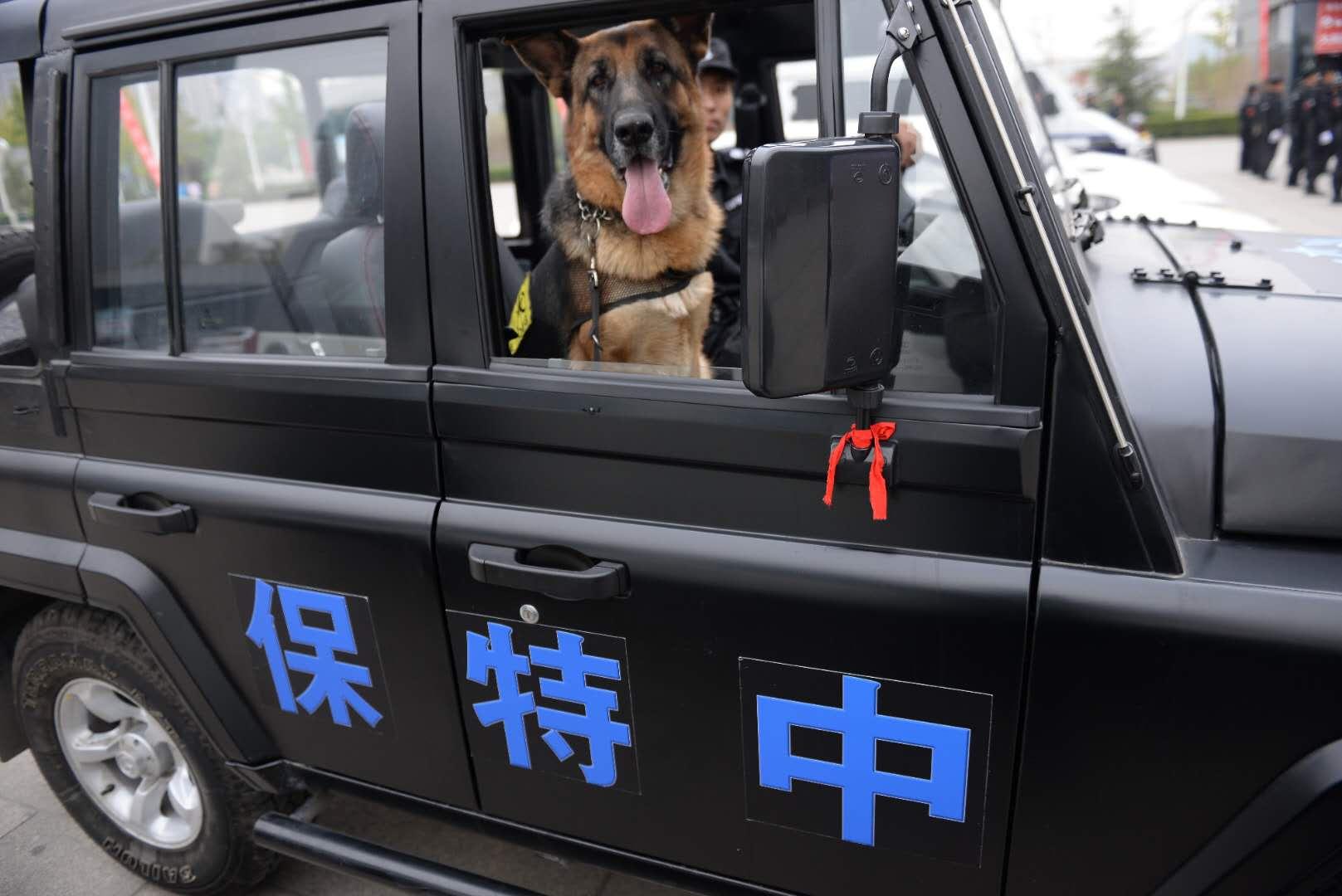 济南保安公司